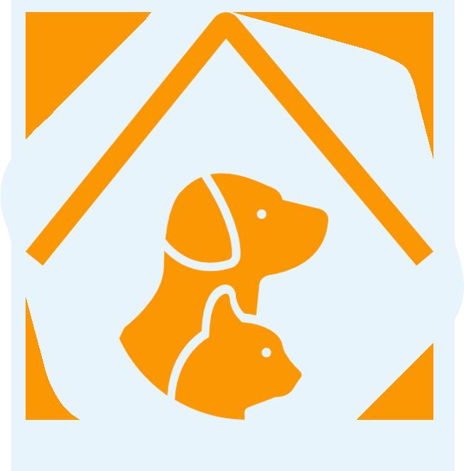 Creches e Hotéis para Cães