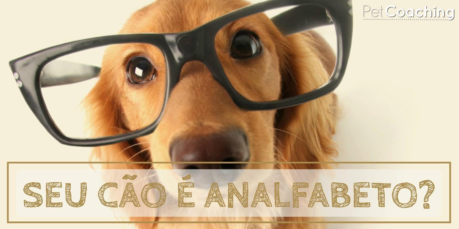 Lambeijos, Carla Ruas - Seu cão é Analfabeto?