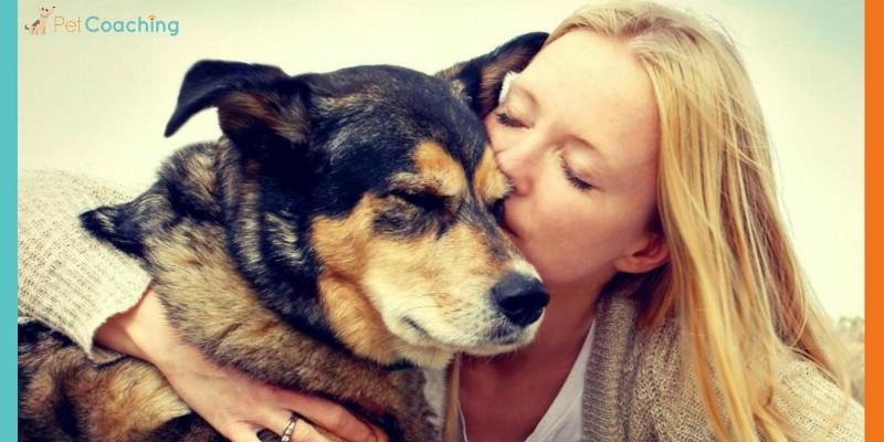 Meu erro é amar demais meu cão...Será?