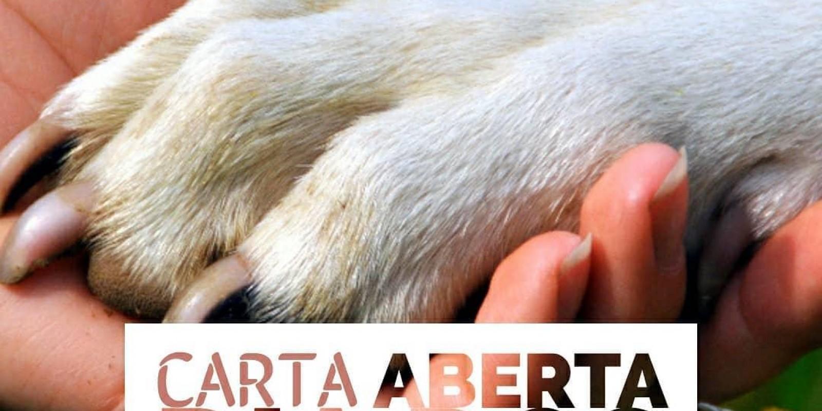 Lambeijos, Carla Ruas - Carta Aberta ao Dia dos Animais