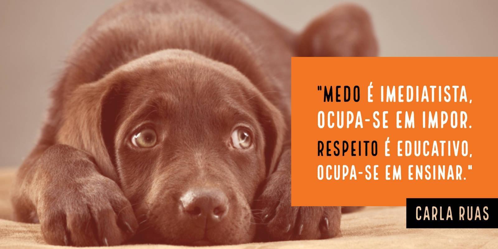 Lambeijos, Carla Ruas - Respeito x Medo
