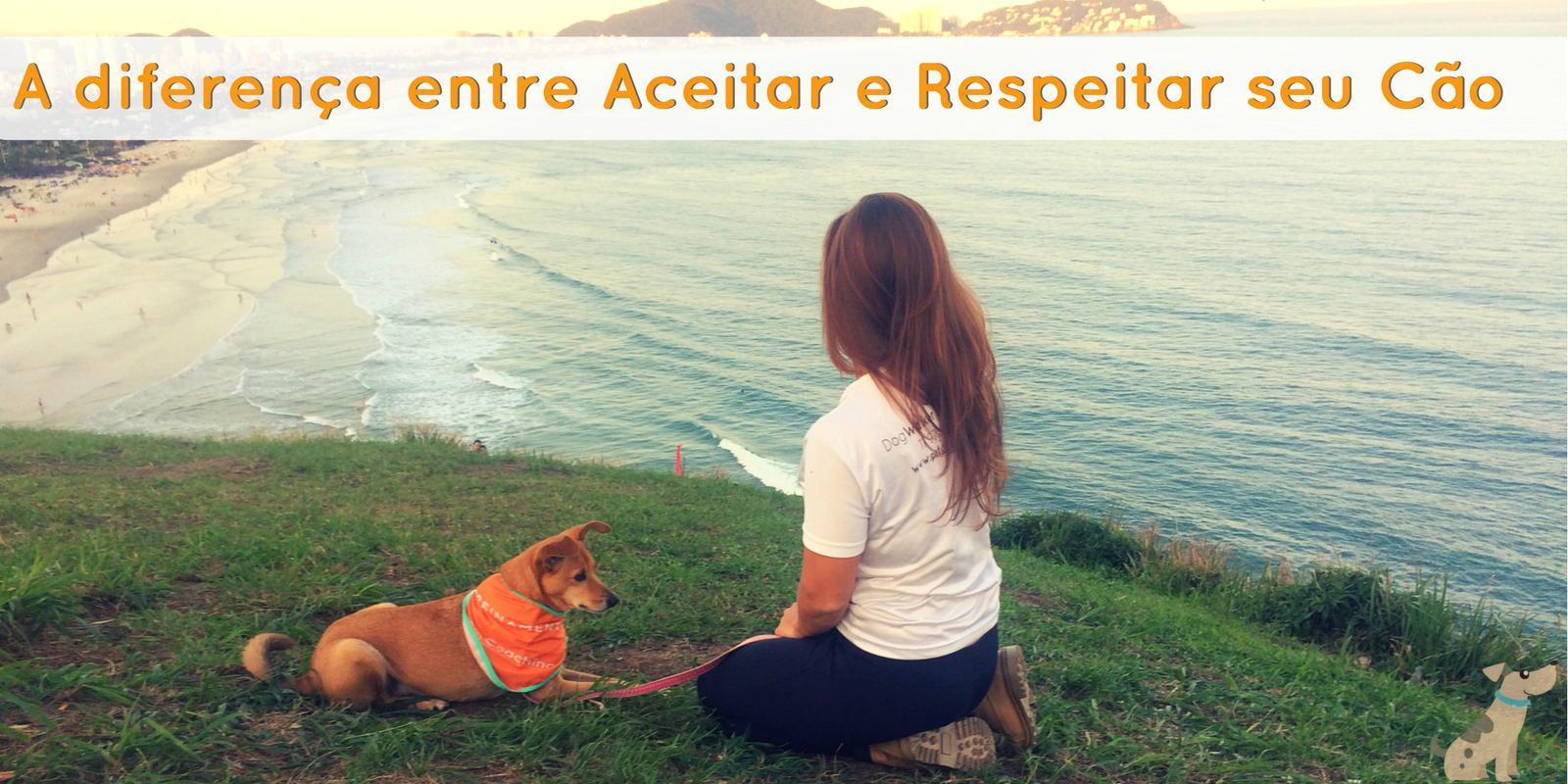 A diferença entre Aceitar e Respeitar seu cão