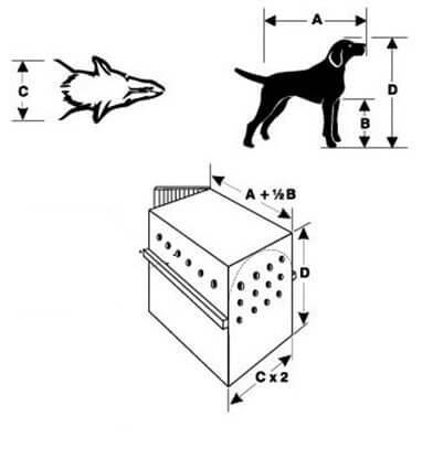 Como escolher o tamanho da caixa de transporte para o meu cão?